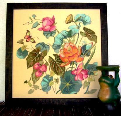 jan-lotusflower.jpg