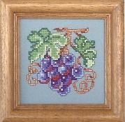 kds-grapes.jpg