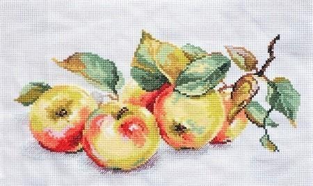 alisa-apples.jpg